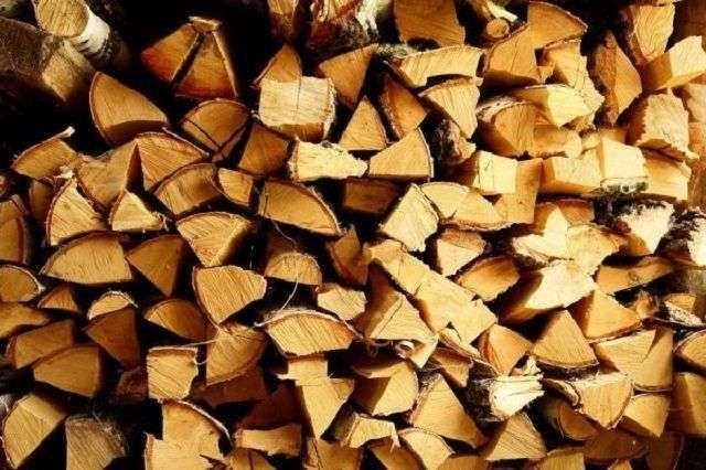 Які дрова краще для лазні